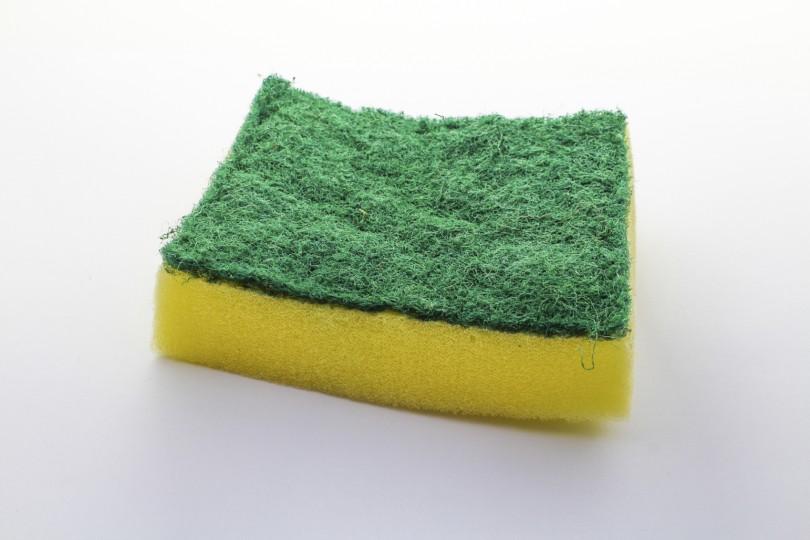 Sponge-810x540
