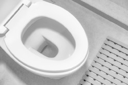 clean toilet bowl